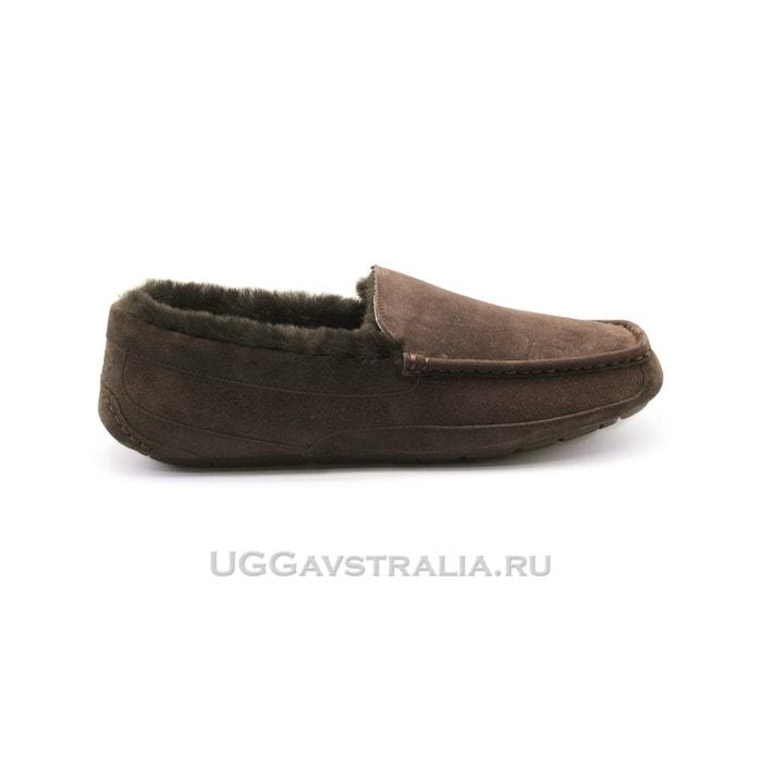Мужские мокасины UGG Mens Ascot Chocolate Fur